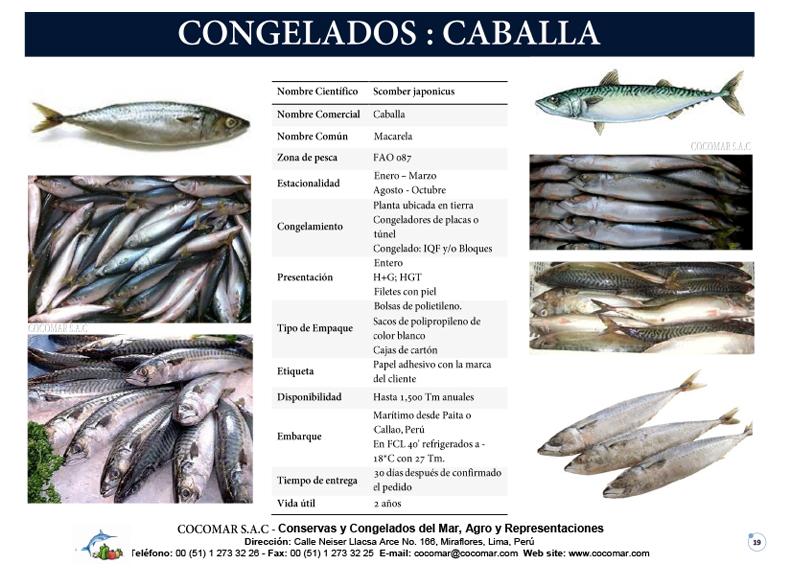 5. Cocomar (Peru) – Caballa congelada